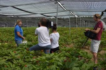NDR Naturnah zu Gast auf der FloraFarm und in den Ginsengfeldern